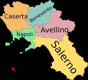 Campania card