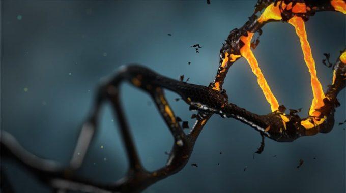 Malattie Genetiche: Novità Sull'editing Del DNA